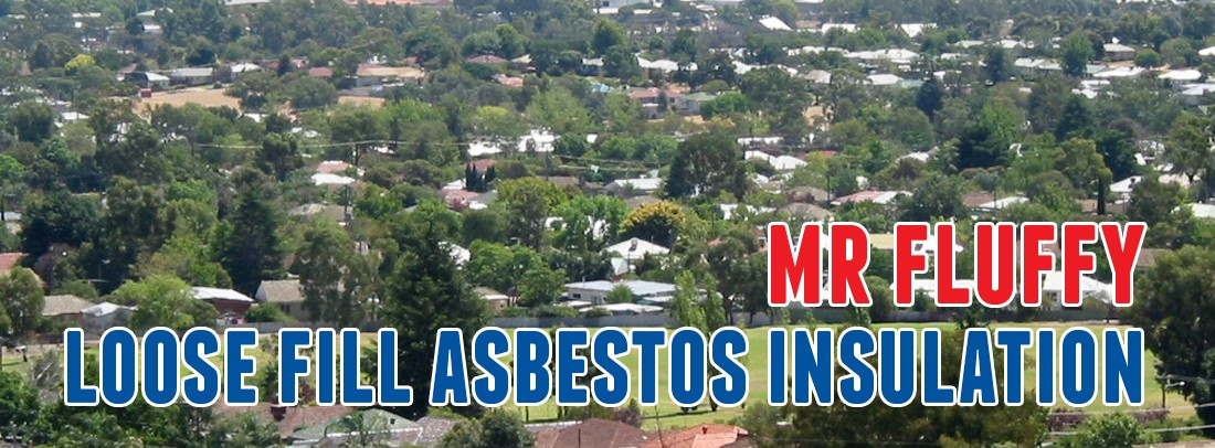 Mr Fluffy Loose Fill Asbestos Insulation